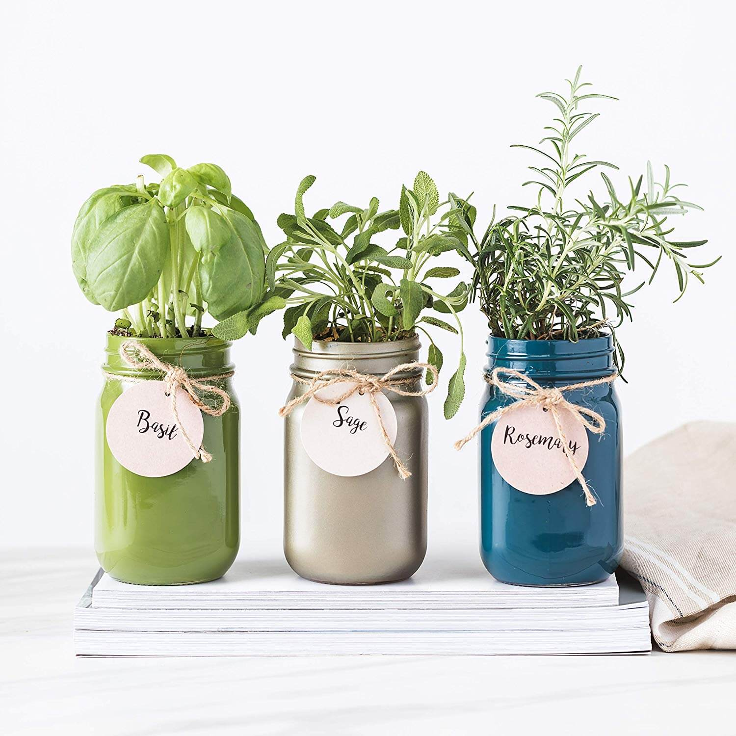 Home garden in jars as one of productive things to do when bored