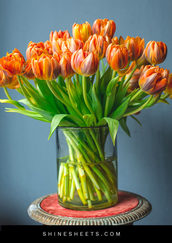flower vase with tulips as a cleaning motivation booster