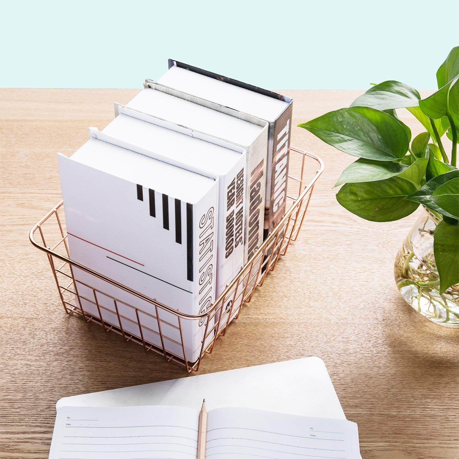 metal wire organizers as a product suggestion on how to keep your house clean