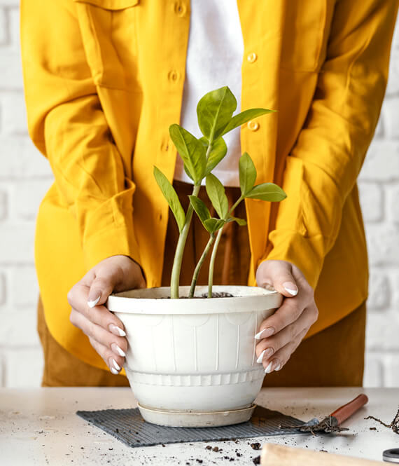 woman taking care of her potted plant at home by herself