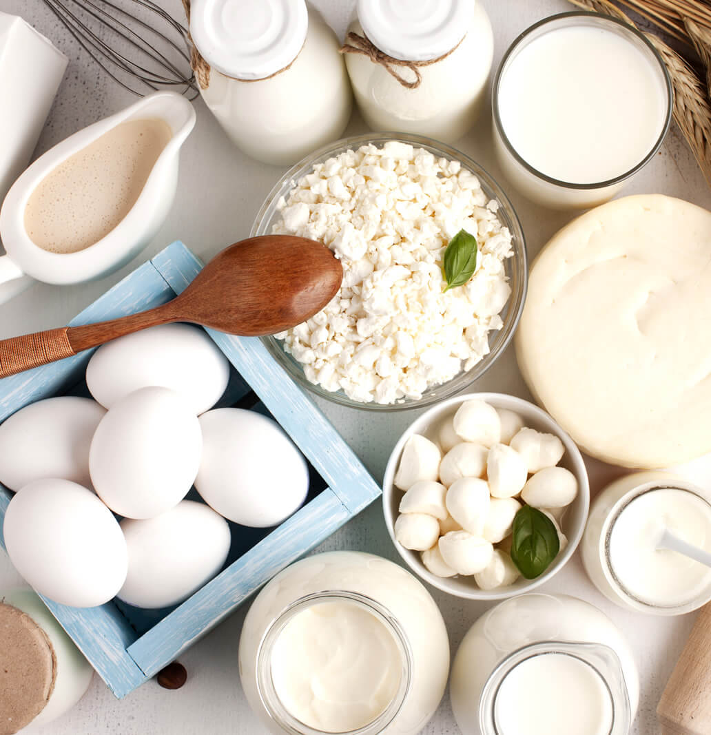 protein-rich foods on the table to lose weight without exercise