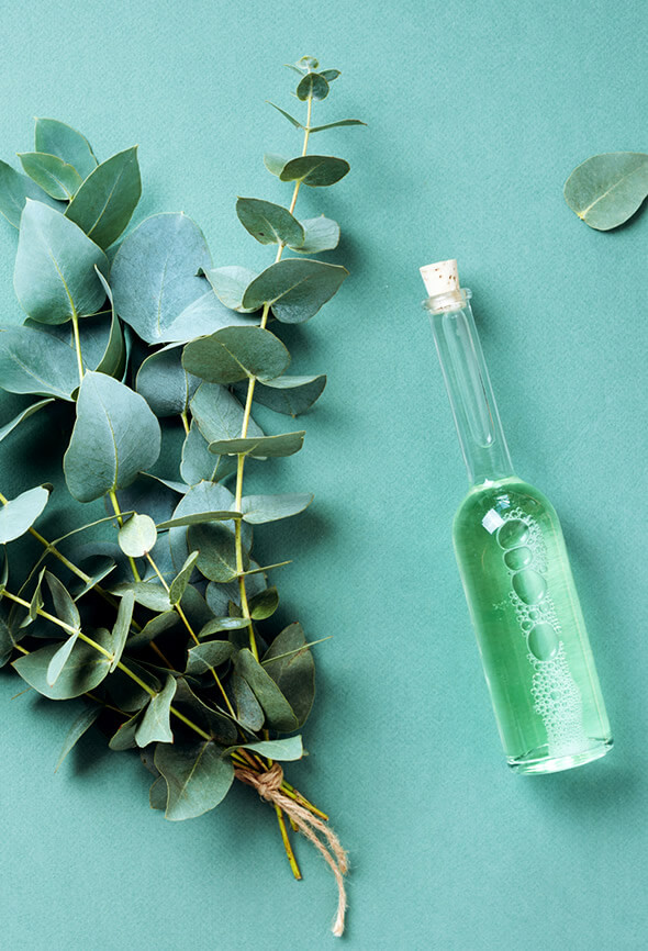 eucalyptus DIY air freshener