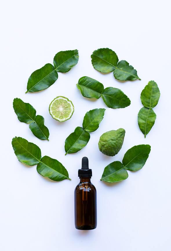 bergamot essential oil blends and leaves