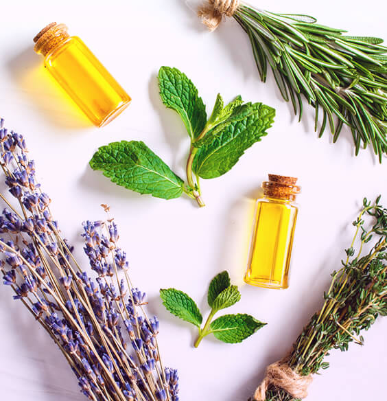 essential oil blends and plant on the table
