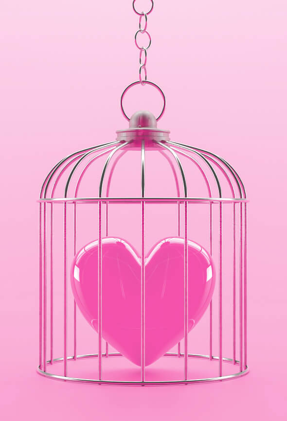 heart in a cage impossible love illustration