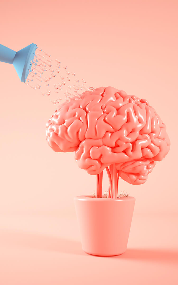watering brain a concept of exploring different thinking styles