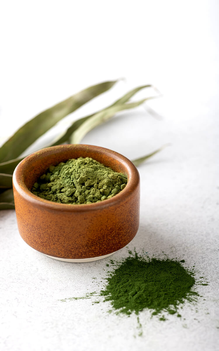 spirulina powder as one of the natural collagen sources